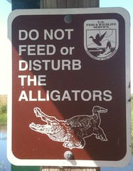 Do not feed the alligators