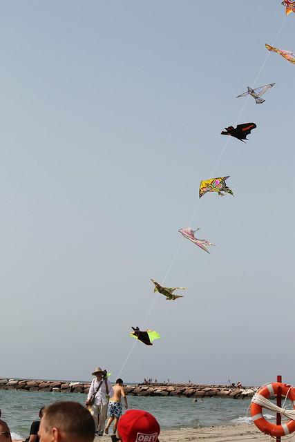 Kite seller