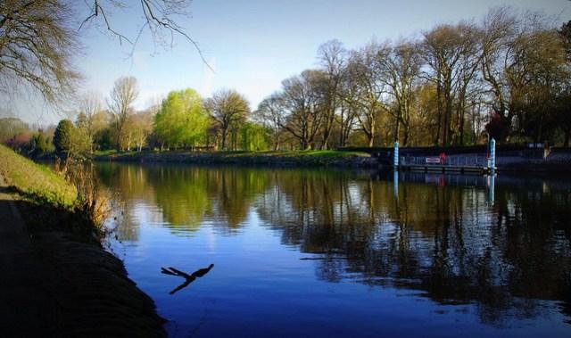 97/366 Bute Park, Cardiff