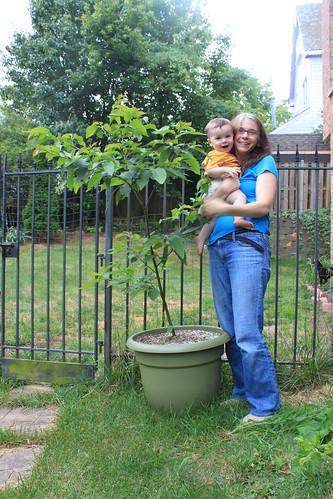 American Chestnut's 2nd Birthday - Sagan and Vicky