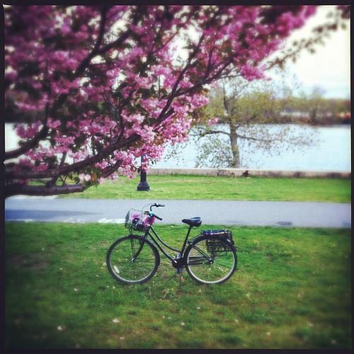 30 Days of Biking: Day 23 of 30