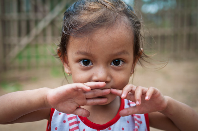 Mekong Delta 92
