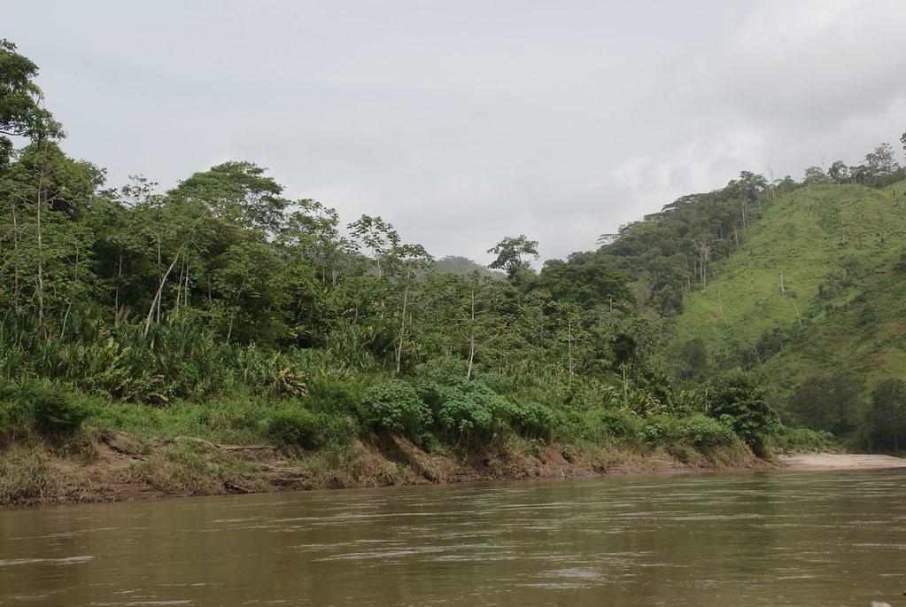 Lost in Wanki river