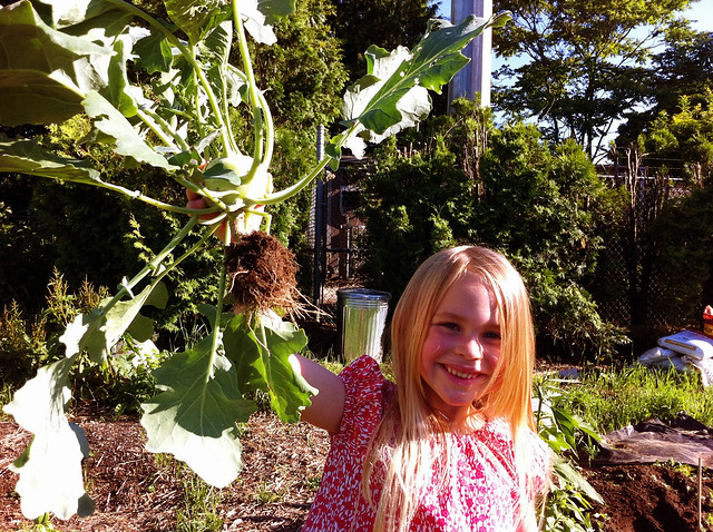 sadie defeats the kohlrabi