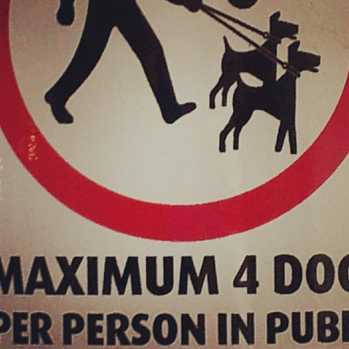 Dog walking sign