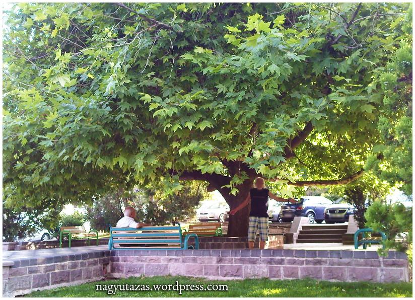 Augusztusi pillanatképek Ankarából 23