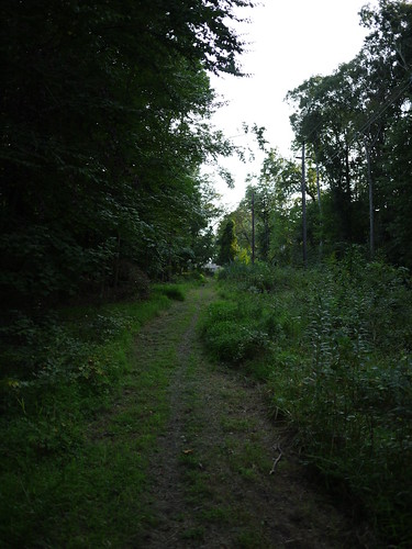 the path back to civilization