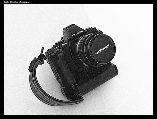 OM-D E-M5 + OM Zuiko 50mm f/3.5 Macro