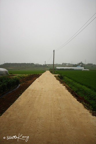 """IMG_3064 - """"A Country Road"""""""