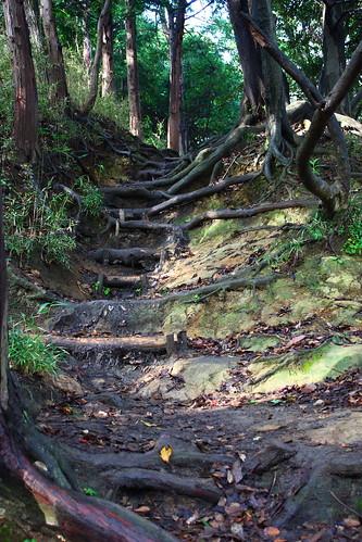 Kamakura - Daibutsu hiking course