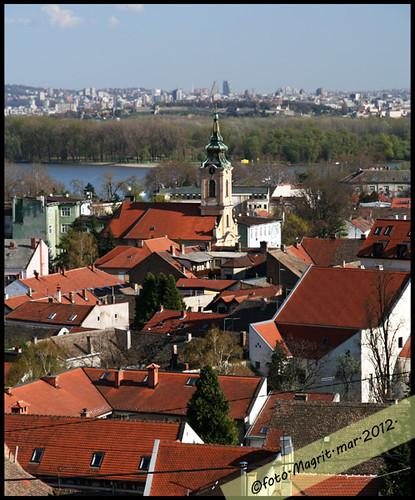 view from Gardosh 2