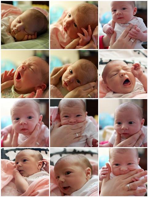 Lila- 2 weeks old