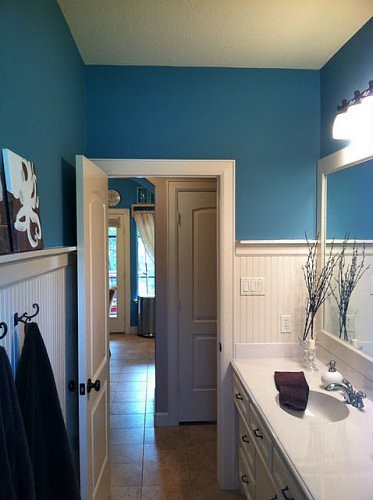 wainscoating in bathroom with color