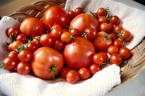 basket full of tomatoes of various sizes