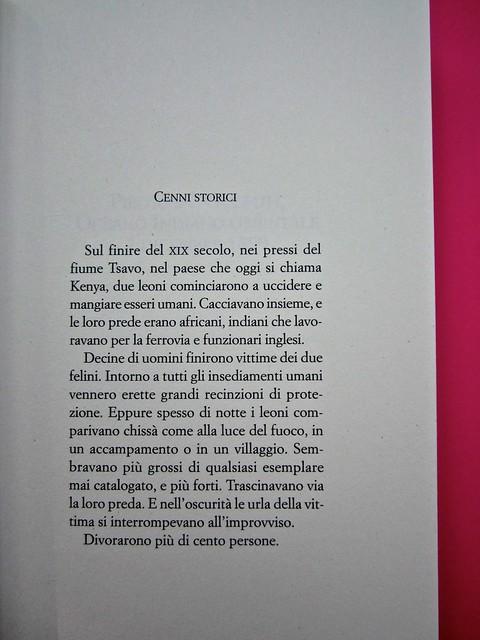 Audrey Schulmann, Tre settimane a dicembre. edizioni e/o. Grafica di Emanuele Gragnisco. pag. 9 (part.), 1