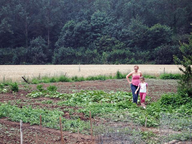 Les jardinières