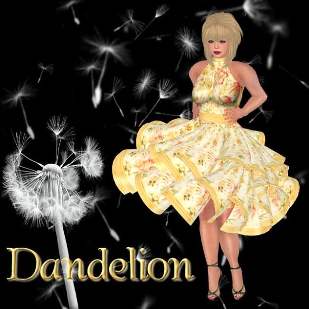 Dandelion - Week 9