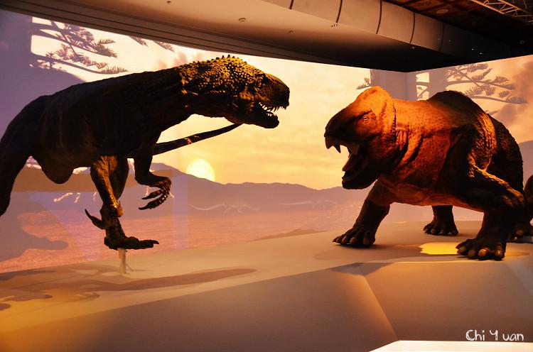 地球最古老的恐龍展14.jpg
