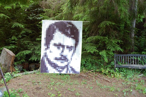 the face of ron swanson from parks and recreation, as a quilt
