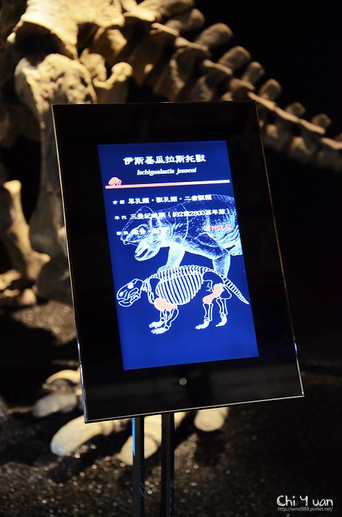 地球最古老的恐龍展10.jpg