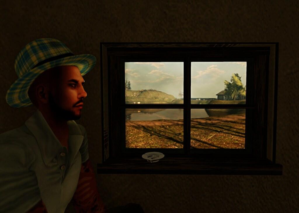 A window to Roche