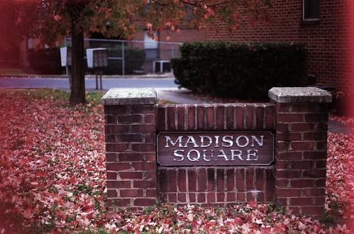 Madison Square (35mm film)