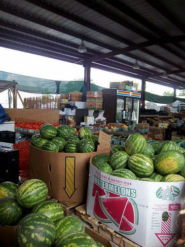 watermelons from ???