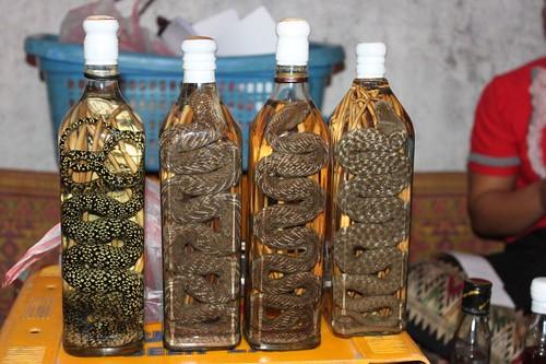 20120127_2808_snake-oil