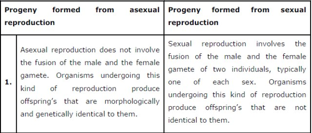 NCERT Solutions Class 12 Biology Chapter 1 : Reproduction in Organisms