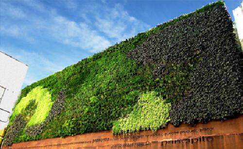 Cubiertas vegetales, eficiencia energética