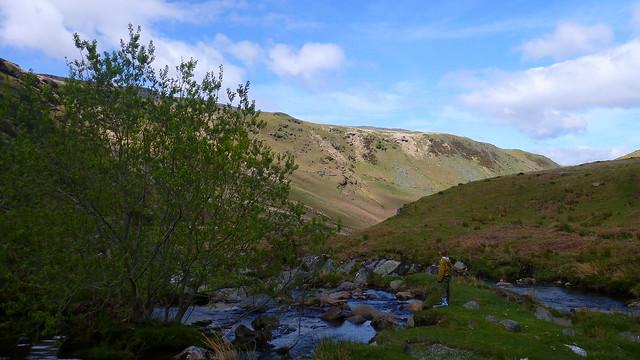 Rhiwnant Valley, Elan Valley