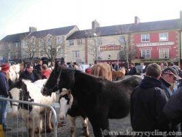 Castleisland horse fair