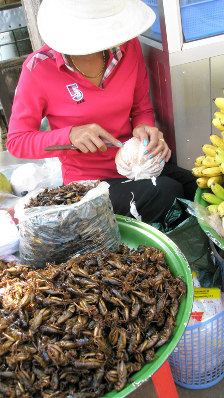 gruesome snacks (Cambodia)