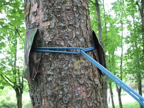 Detaliu prindere copac