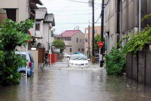 2013 Typhoon 17 022r