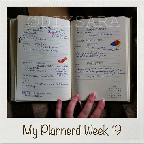 My Plannerd Week 19