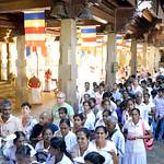 09 Viajefilos en Sri Lanka. Kandy 16