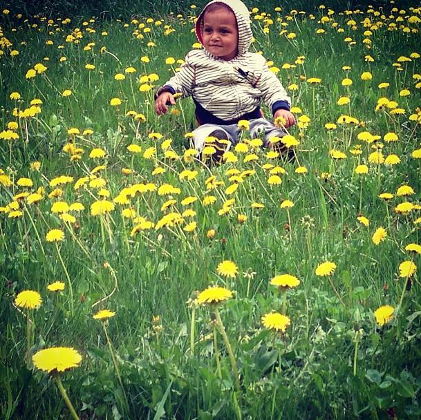 avery in flowers 1