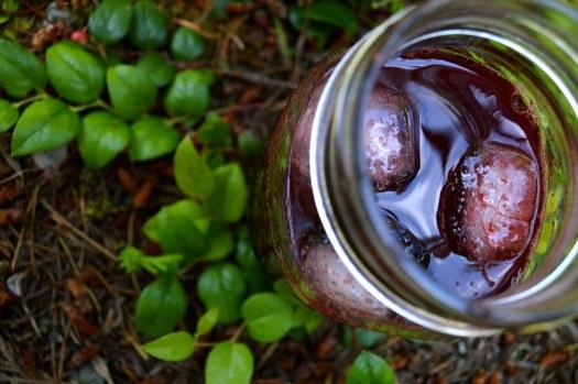 Blueberry Agua Fresca