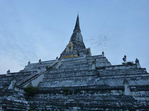 birds Wat Phu Khao Thong