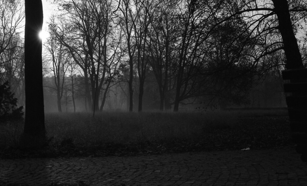 Kiev 4 + Helios 103 - Mist in the Park