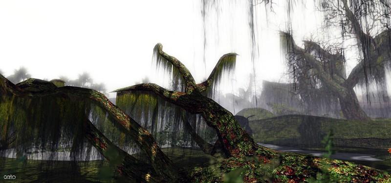 Wetlands - I