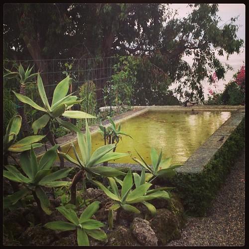 Piove! #isolamadre #lagomaggiore #giriingiro