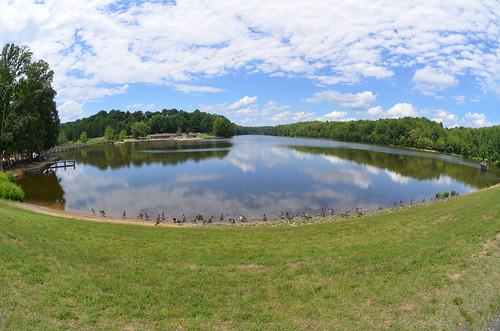 picnic view (1)