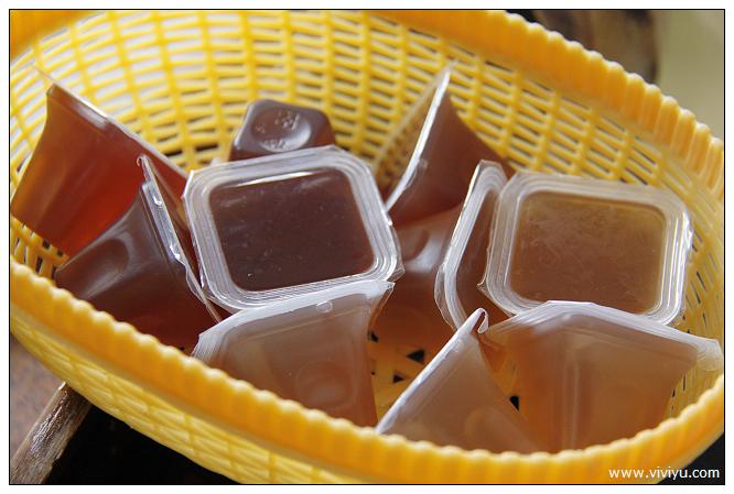 [台東.美食]立榮假期.看見農遊新樂園~愛嬌姨茶園.養生茶餐料理 @VIVIYU小世界