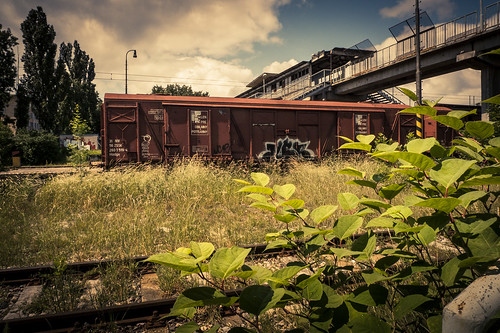 The Lost Station : Sleeping in the grass (Bratislava, Slovakia) - Photo : Gilderic