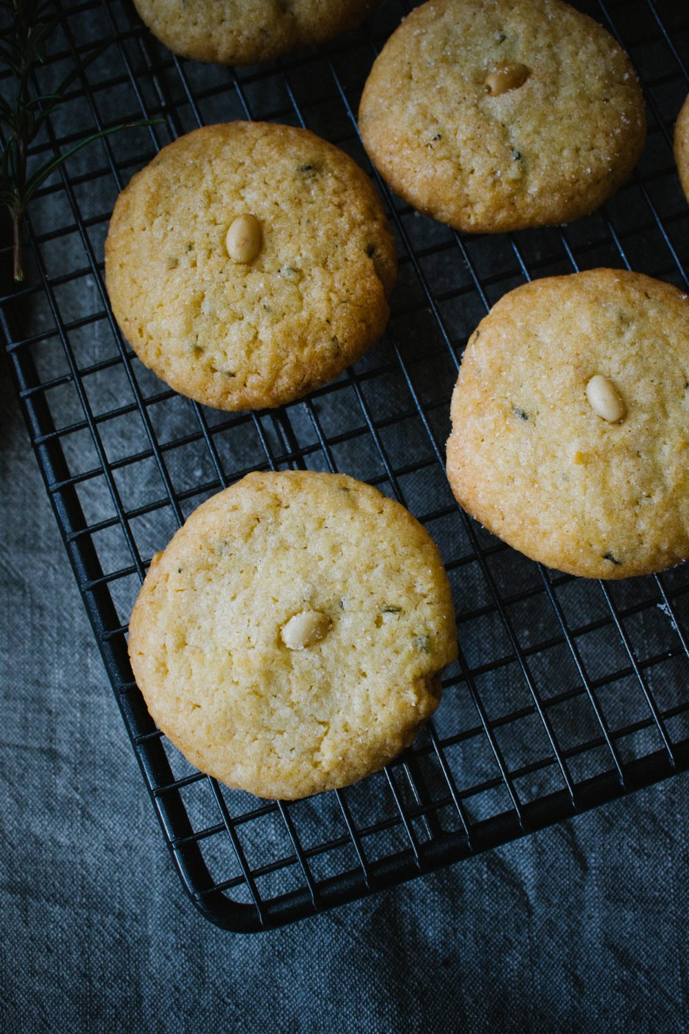Pine Nut and Rosemary Cookies | Simple Provisions