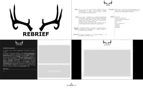 ppt slides designs