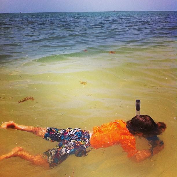 A little snorkeling along the beach
