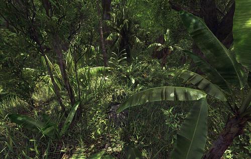 Thick Jungle